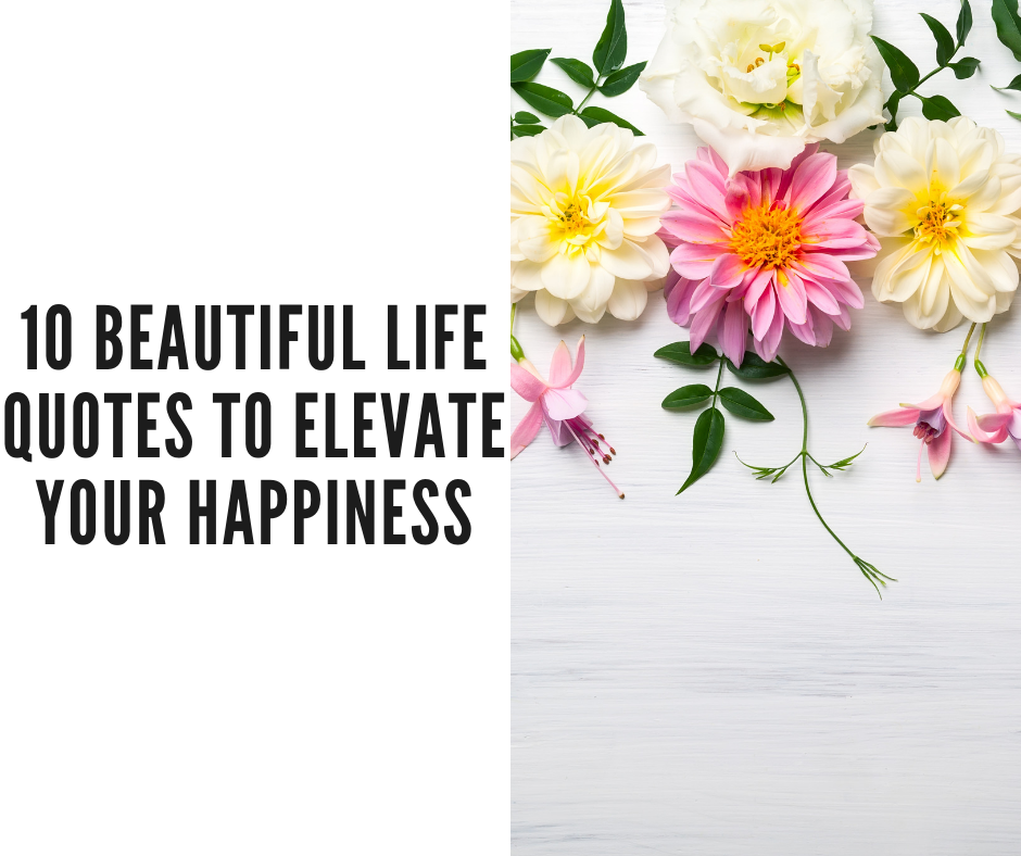 positive life quotes to elevate your happiness
